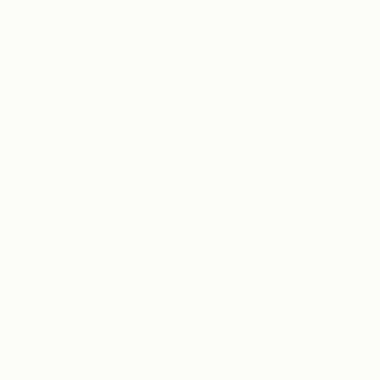 NH 203/C1 - smalto a freddo coprente bianco