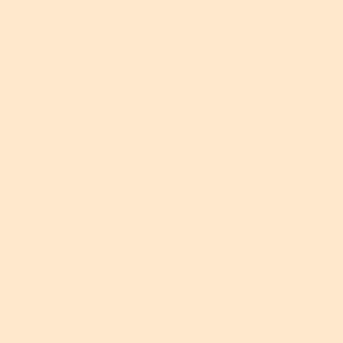 NH 203/C10 - smalto a freddo coprente beige