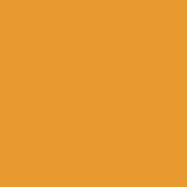 NH 203/C22 - smalto a freddo coprente senape