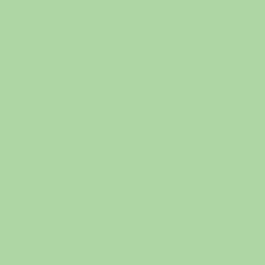 NH 203/C39 - smalto a freddo coprente verde pistacchio