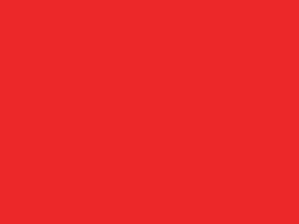 NH 203/C48 - smalto a freddo coprente rosso